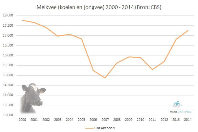 Melkveestapel gemeente Sint Anthonis